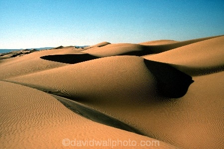 ripple;ripples;shadow;shadows;dune;dunes;deserts;deserted;desolate;desolation;sand_dune;sand_dunes;sand;nature;natural;dry;hot;texture;thirst;silence;vast;vastness;endless;arid;waterless;parched;infertile;barren;global-warming;wilderness;ecosystem;ecosystems;immense;natural-wonder-of-the-world