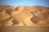 ripple;ripples;shadow;shadows;dune;dunes;desert;deserts;deserted;desolate;desolation;sand_dune;sand_dunes;sand;nature;natural;dry;hot;texture;thirst;silence;vast;vastness;endless;arid;waterless;parched;infertile;barren;global-warming;wilderness;ecosystem;ecosystems;immense;natural-wonder-of-the-world;sahara;saharan;africa;african;algeria