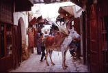 africa;african;africans;north-africa;morocco;moroccan;shop;shops;stall;stalls;market;markets;travel;fez;fes;medina;narrow;alley;alleyway;street;streets;footpath;footpaths;busy;tradition;traditional;culture;cultural;donkey;donkeys;mule;mules;ass;asses