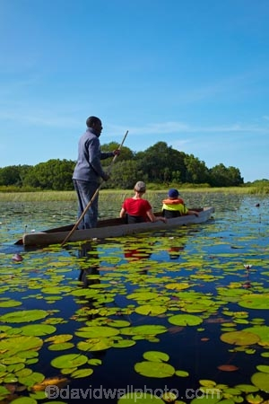 Africa;African;aquatic-plant;aquatic-plants;boat;boats;Botswana;boy;boys;canoe;canoes;delta;deltas;dugout;dugout-canoe;dugout-canoes;dugouts;Endorheic-basin;female;inland-delta;internal-drainage-systems;lily-pad;lily-pads;logboat;makoro;makoros;mekoro;mekoros;mokoro;mokoro-safari;mokoros;monoxylon;Nymphaeaceae;Okavango;Okavango-Delta;Okavango-Swamp;people;person;pirogue;pirogues;plant;plants;poler;polers;river-delta;Seven-Natural-Wonders-of-Africa;Southern-Africa;tourism;tourist;tourists;water-lilies;water-lily;water-lily-pad;water-lily-pads;water_lilies;water_lily;waterlilies;waterlily;waterlily-pad;waterlily-pads;woman;women