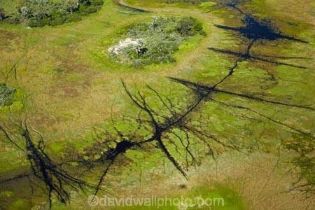 aerial;aerial-image;aerial-images;aerial-photo;aerial-photograph;aerial-photographs;aerial-photography;aerial-photos;aerial-view;aerial-views;aerials;Africa;animal-track;animal-tracks;animal-trail;animal-trails;Botswana;chanel;chanels;delta;deltas;Endorheic-basin;flood-plain;flood-plains;flood_plain;flood_plains;floodplain;floodplains;inland-delta;internal-drainage-systems;Okavango;Okavango-Delta;Okavango-Swamp;path;paths;pathways;plain;plains;river;river-delta;rivers;Seven-Natural-Wonders-of-Africa;Southern-Africa;stream;streams;swamp;swampland;swamps;track;tracks;trail;trails;water;wildlife-tracks;wildlife-trails;channel;channels;