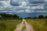 Africa;approaching-storm;approaching-storms;black-cloud;black-clouds;Botswana;cloud;clouds;cloudy;dark-cloud;dark-clouds;dirt-road;dirt-roads;Dobe-Border;dry_weather-road;earth-road;gravel-road;gravel-roads;gray-cloud;gray-clouds;grey-cloud;grey-clouds;metal-road;metal-roads;metalled-road;metalled-roads;Nokaneng;rain-cloud;rain-clouds;rain-storm;rain-storms;road;roads;sand-road;sand-roads;sandy-road;sandy-roads;Southern-Africa;storm;storm-cloud;storm-clouds;storms;thunder-storm;thunder-storms;thunderstorm;thunderstorms;track;tracks;twin-spoor-bush-track;twin-spoor-bush-tracks;unpaved-road;unpaved-roads;weather