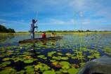 Africa;African;aquatic-plant;aquatic-plants;boat;boats;Botswana;boy;boys;canoe;canoes;delta;deltas;dugout;dugout-canoe;dugout-canoes;dugouts;Endorheic-basin;female;inland-delta;internal-drainage-systems;lily-pad;lily-pads;logboat;makoro;makoros;mekoro;mekoros;mokoro;mokoro-safari;mokoros;monoxylon;Nymphaeaceae;Okavango;Okavango-Delta;Okavango-Swamp;people;person;pirogue;pirogues;plant;plants;poler;polers;river-delta;Seven-Natural-Wonders-of-Africa;Southern-Africa;tourism;tourist;tourists;water-lilies;water-lily;water-lily-pad;water-lily-pads;water_lilies;water_lily;waterlilies;waterlily;waterlily-pad;waterlily-pads;woman;women