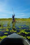 Africa;African;aquatic-plant;aquatic-plants;boat;boats;Botswana;canoe;canoes;delta;deltas;dugout;dugout-canoe;dugout-canoes;dugouts;Endorheic-basin;inland-delta;internal-drainage-systems;lily-pad;lily-pads;logboat;makoro;makoros;mekoro;mekoros;mokoro;mokoro-safari;mokoros;monoxylon;Nymphaeaceae;Okavango;Okavango-Delta;Okavango-Swamp;people;person;pirogue;pirogues;plant;plants;poler;polers;river-delta;Seven-Natural-Wonders-of-Africa;Southern-Africa;tourism;tourist;tourists;water-lilies;water-lily;water-lily-pad;water-lily-pads;water_lilies;water_lily;waterlilies;waterlily;waterlily-pad;waterlily-pads