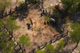 aerial;aerial-image;aerial-images;aerial-photo;aerial-photograph;aerial-photographs;aerial-photography;aerial-photos;aerial-view;aerial-views;aerials;Africa;boma;bomas;Botswana;cattle-pen;cattle-pens;cattle-yard;cattle-yards;corral;corrals;krall;kralls;livestock-enclosure;livestock-enclosures;Southern-Africa