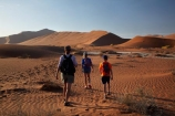 Africa;arid;big-dunes;children;Dead-Vlei;Deadvlei;desert;deserts;dry;dune;dunes;families;family;family-holiday;family-holidays;giant-dune;giant-dunes;giant-sand-dune;giant-sand-dunes;holiday;holidays;hot;huge-dunes;large-dunes;Namib-Desert;Namib-Naukluft-N.P.;Namib-Naukluft-National-Park;Namib-Naukluft-NP;Namib_Naukluft-N.P.;Namib_Naukluft-National-Park;Namib_Naukluft-NP;Namibia;national-park;national-parks;natural;orange-sand;people;person;remote;remoteness;reserve;reserves;sand;sand-dune;sand-dunes;sand-hill;sand-hills;sand_dune;sand_dunes;sand_hill;sand_hills;sanddune;sanddunes;sandhill;sandhills;sandy;Sossusvlei;Southern-Africa;tourism;tourist;tourists;wilderness