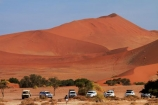 4wd;4wds;4wds;4x4;4x4s;4x4s;Africa;arid;big-dunes;Bushlore;Bushlore-4x4;Bushlore-4x4-camper;camper;campers;Dead-vlei;Deadvlei;desert;deserts;double-cab-hilux;dry;dune;dunes;four-by-four;four-by-fours;four-wheel-drive;four-wheel-drives;giant-dune;giant-dunes;giant-sand-dune;giant-sand-dunes;Hilux;hilux-camper;Hiluxes;hot;huge-dunes;large-dunes;Namib-Desert;Namib-Naukluft-N.P.;Namib-Naukluft-National-Park;Namib-Naukluft-NP;Namib_Naukluft-N.P.;Namib_Naukluft-National-Park;Namib_Naukluft-NP;Namibia;national-park;national-parks;natural;orange-sand;remote;remoteness;reserve;reserves;roof-tent;roof-tents;sand;sand-dune;sand-dunes;sand-hill;sand-hills;sand_dune;sand_dunes;sand_hill;sand_hills;sanddune;sanddunes;sandhill;sandhills;sandy;Sossusvlei;Southern-Africa;sports-utility-vehicle;sports-utility-vehicles;suv;suvs;Toyota;toyota-camper;Toyota-Hilux;Toyota-Hiluxes;Toyotas;twin-cab-hilux;vehicle;vehicles;wilderness