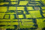 aerial;aerial-image;aerial-images;aerial-photo;aerial-photograph;aerial-photographs;aerial-photography;aerial-photos;aerial-view;aerial-views;aerials;agricultural;agriculture;Asia;Cambodia;country;countryside;crop;crops;farm;farming;farmland;farms;field;fields;flood-plain;flood-plains;floodplain;floodplains;green;grow;horticulture;Indochina-Peninsula;Kampuchea;Kingdom-of-Cambodia;Lower-Mekong-Basin;lush;meadow;meadows;Mekong-Plain;paddock;paddocks;paddy-field;paddy-fields;pasture;pastures;rice-field;rice-fields;rice-growing;rice-paddies;rice-paddy;rice-production;rural;Siem-Reap;Siem-Reap-Province;Southeast-Asia;verdant