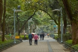 Asia;Causeway-Bay;China;H.K.;HK;Hong-Kong;Hong-Kong-Island;Hong-Kong-Special-Administrative-Region-of-the-Peoples-Republic;path;pathway;pedestrian;pedestrians;people;Peoples-Republic-of-China;person;tree;trees;Victoria-Park;Victoria-Pk;walker;walkers;walking;walkway;walkways