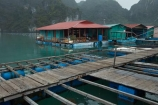 aqua-farm;aqua-farming;aquafarms;aqufarm;Asia;Ha-Long-Bay;Halong-Bay;Halong-Bay-Pearl-Farm;North-Vietnam;Northern-Vietnam;pearl-farm;pearl-farms;Qung-Ninh-Province;Quang-Ninh-Province;South-East-Asia;Southeast-Asia;tourism;UN-world-heritage-area;UN-world-heritage-site;UNESCO-World-Heritage-area;UNESCO-World-Heritage-Site;united-nations-world-heritage-area;united-nations-world-heritage-site;Vnh-H-Long;Vietnam;Vietnamese;world-heritage;world-heritage-area;world-heritage-areas;World-Heritage-Park;World-Heritage-site;World-Heritage-Sites