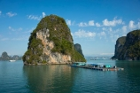 Asia;boat;boats;cruise-boat;cruise-boats;cruising;floating-shop;floating-shops;Ha-Long-Bay;Halong-Bay;karst-landscape;limestone-karsts;North-Vietnam;Northern-Vietnam;Qung-Ninh-Province;Quang-Ninh-Province;shop;shops;South-East-Asia;Southeast-Asia;tour-boat;tour-boats;tourism;tourist;tourist-boat;tourist-boats;tourists;travel-destination;UN-world-heritage-area;UN-world-heritage-site;UNESCO-World-Heritage-area;UNESCO-World-Heritage-Site;united-nations-world-heritage-area;united-nations-world-heritage-site;Vnh-H-Long;Vietnam;Vietnamese;world-heritage;world-heritage-area;world-heritage-areas;World-Heritage-Park;World-Heritage-site;World-Heritage-Sites