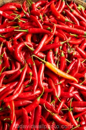 chili;chili-pepper;chilis;chilli;chilli-pepper;chillis;commerce;commercial;Dong-Ba-Market;fresh-produce;hot;Hu;Hue;market;market-place;market-stall;market-stalls;market_place;marketplace;marketplaces;markets;North-Central-Coast;produce;produce-market;produce-markets;produce-stall;red;red-chili;red-chilis;red-chilli;red-chillis;retail;retailer;retailers;shop;shopping;shops;stall;stalls;street-scene;street-scenes;Tha-Thiên_Hu-Province;Thua-Thien_Hue-Province;vege;veges;vegetable;vegetable-stall;vegetable-stalls;vegetables;Vietnam;Vietnamese;Asia
