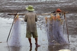 Asia;Asian;fisher;fisherman;fishermen;fishing;fishing-net;Mekong-Delta;muddy-flats;muddy-tidal-flats;net;nets;South-East-Asia;Southeast-Asia;Tan-Thanh;Tan-Thanh-beach;tidal;tidal-flats;tide;Tien-Giang;Tien-Giang-Province;Vietnam;Vietnamese;water