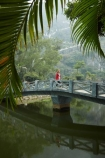 Asia;bridge;bridges;Mua-Cave;Ninh-Binh;Ninh-Bình-province;Northern-Vietnam;pedestrian-bridge;person;pond;ponds;Red-River-Delta;South-East-Asia;Southeast-Asia;tourist;tourists;Trang-An-Lanscape-Complex;Trang-An-World-Heritage-Site;UN-world-heritage-area;UN-world-heritage-site;UNESCO-World-Heritage-area;UNESCO-World-Heritage-Site;united-nations-world-heritage-area;united-nations-world-heritage-site;Vietnam;Vietnamese;water;world-heritage;world-heritage-area;world-heritage-areas;World-Heritage-Park;World-Heritage-site;World-Heritage-Sites