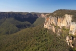 Australasia;Australia;Australian;Blue-Mountains;Blue-Mountains-N.P.;Blue-Mountains-National-Park;Blue-Mountains-NP;bluff;bluffs;cliff;cliffs;escarpment;escarpments;eucalypt;eucalypts;eucalyptus;eucalytis;Govetts-Leap-Lookout;Grose-Valley;gum;gum-tree;gum-trees;gums;lookout;lookouts;mountainside;mountainsides;N.S.W.;New-South-Wales;NSW;panorama;panoramas;sandstone;scene;scenes;scenic-view;scenic-views;steep;tree;trees;UN-world-heritage-site;UNESCO-World-Heritage-Site;united-nations-world-heritage-site;view;viewpoint;viewpoints;views;vista;vistas;world-heritage;world-heritage-area;world-heritage-areas;World-Heritage-Park;World-Heritage-site;World-Heritage-Sites