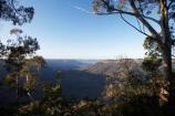 Australasia;Australia;Australian;Blue-Mountains;Blue-Mountains-N.P.;Blue-Mountains-National-Park;Blue-Mountains-NP;bluff;bluffs;cliff;cliffs;escarpment;escarpments;eucalypt;eucalypts;eucalyptus;eucalytis;gum;gum-tree;gum-trees;gums;Jamison-Valley;Katoomba;Leura;mountainside;mountainsides;N.S.W.;New-South-Wales;NSW;sandstone;steep;Sublime-Point;Sublime-Point-Lookout;tree;trees;UN-world-heritage-site;UNESCO-World-Heritage-Site;united-nations-world-heritage-site;world-heritage;world-heritage-area;world-heritage-areas;World-Heritage-Park;World-Heritage-site;World-Heritage-Sites