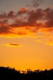 Australasia;Australia;Australian;Blue-Mountains;Blue-Mountains-N.P.;Blue-Mountains-National-Park;Blue-Mountains-NP;dusk;evening;Jamison-Valley;Katoomba;N.S.W.;New-South-Wales;nightfall;NSW;orange;sky;sunset;sunsets;twilight;UN-world-heritage-site;UNESCO-World-Heritage-Site;united-nations-world-heritage-site;world-heritage;world-heritage-area;world-heritage-areas;World-Heritage-Park;World-Heritage-site;World-Heritage-Sites
