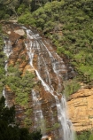 Australia;Blue-Mountains;Blue-Mountains-N.P.;Blue-Mountains-National-Park;Blue-Mountains-NP;bluff;bluffs;cascade;cascades;cliff;cliff-face;cliffs;creek;creeks;escarpment;escarpments;falls;mountainside;mountainsides;N.S.W.;National-Pass-Trail;natural;nature;New-South-Wales;NSW;scene;scenic;steep;stream;streams;UN-world-heritage-site;UNESCO-World-Heritage-Site;united-nations-world-heritage-site;water;water-fall;water-falls;waterfall;waterfalls;Wentworth-falls;wet;world-heritage;world-heritage-area;world-heritage-areas;World-Heritage-Park;World-Heritage-site;World-Heritage-Sites