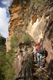 Australia;Blue-Mountains;Blue-Mountains-N.P.;Blue-Mountains-National-Park;Blue-Mountains-NP;bluff;bluffs;boy;boys;brother;brothers;child;children;cliff;cliff-face;cliffs;escarpment;escarpments;families;family;girl;girls;hike;hiker;hikers;hiking;hiking-track;hiking-tracks;Jamison-Valley;kid;kids;little-boy;little-girl;mother;mothers;mountainside;mountainsides;N.S.W.;National-Pass-Track;National-Pass-Trail;New-South-Wales;NSW;people;person;sibbling;sibblings;sister;sisters;small-boys;small-girls;stair;stairs;starway;steep;track;tracks;trail;trails;tramp;tramper;trampers;tramping;trek;treker;trekers;treking;trekker;trekkers;trekking;UN-world-heritage-site;UNESCO-World-Heritage-Site;united-nations-world-heritage-site;walk;walker;walkers;walking;walking-track;walking-tracks;walking-trail;walking-trails;Wentworth-Falls;world-heritage;world-heritage-area;world-heritage-areas;World-Heritage-Park;World-Heritage-site;World-Heritage-Sites