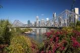 Australasia;Australia;Australian;bourganvilliia;Brisbane;Brisbane-River;Petrie-Bight;Qld;Queensland;river;rivers;Story-Bridge