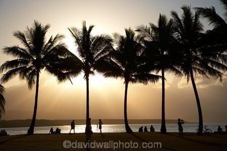 Australasian;Australia;Australian;dusk;evening;holiday;holidaying;holidays;Island-Point;North-Queensland;palm;palm-tree;palm-trees;palms;people;person;Port-Douglas;Pt-Douglas;Pt.-Douglas;Qld;Queensland;sky;sunset;sunsets;tourism;tourist;tourists;travel;traveler;traveling;traveller;travelling;Tropcial-North-Queensland;twilight;vacation;vacationers;vacationing;vacations