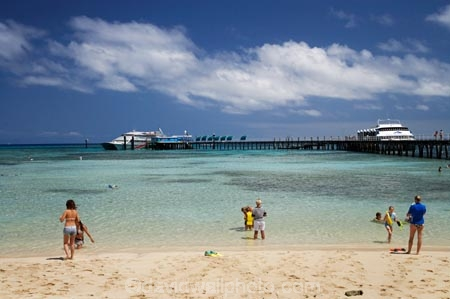 australasian;Australia;australian;Barrier-Reef;bathe;bather;bathers;bathing;beach;beaches;cairns;cay;cays;coast;coastal;coastline;coastlines;coasts;coral-cay;coral-cays;coral-reef;coral-reefs;Coral-Sea;dive-site;dive-sites;Ecosystem;Environment;excitement;exciting;freedom;Great-Barrier-Reef;Great-Barrier-Reef-Marine-Park;Green-Is;Green-Is-NP;Green-Is.;green-island;Green-Island-N.P.;Green-Island-National-Park;Green-Island-NP;Green-Island-Resort;holiday;holiday-destination;holiday-destinations;Holidays;hot;leisure;marine-environment;North-Queensland;ocean;oceans;people;person;persons;play;playing;Qld;queensland;recreation;reef;reefs;relax;relaxing;sand;sand-cay;sand-cays;sand-sandy;sandy;sea;seas;shore;shoreline;shorelines;shores;south-pacific;sport;summer;swim;swimmer;swimmers;swimming;tasman-sea;tourism;travel;Tropcial-North-Queensland;tropical;tropical-reef;tropical-reefs;UNESCO-World-Heritage-Site;Vacation;Vacations;water;wet;Wiorld-Heritage-Site;world-heritage-area;World-Heritage-Park;world-heritage-site