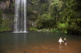Atherton-Tableland;Atherton-Tablelands;Australasian;Australia;Australian;cascade;cascades;creek;creeks;falls;Millaa-Millaa-Falls;Millaa-Millaa-Waterfall;Millaa-Millaa-Waterfalls;natural;nature;North-Queensland;Qld;Queensland;scene;scenic;stream;streams;tourism;tourist;tourists;tropical-rainforest;tropical-rainforests;water;water-fall;water-falls;waterfall;waterfalls;wet