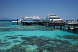 australasian;Australia;australian;Barrier-Reef;boat;boats;cairns;cay;cays;coast;coastal;coastline;coastlines;coasts;coral-cay;coral-cays;coral-reef;coral-reefs;Coral-Sea;cruise;cruises;dive-site;dive-sites;Ecosystem;Environment;Great-Barrier-Reef;Great-Barrier-Reef-Marine-Park;Green-Is;Green-Is-NP;Green-Is.;green-island;Green-Island-N.P.;Green-Island-National-Park;Green-Island-NP;Green-Island-Resort;holiday;holiday-destination;holiday-destinations;Holidays;jetties;jetty;launch;launches;marine-environment;North-Queensland;ocean;oceans;pier;piers;Qld;queensland;reef;reefs;sand-cay;sand-cays;sea;seas;shore;shoreline;shorelines;Shores;south-pacific;tasman-sea;tour-boat;tour-boats;tourism;tourist;tourist-boat;tourist-boats;travel;Tropcial-North-Queensland;tropical;tropical-reef;tropical-reefs;UNESCO-World-Heritage-Site;Vacation;Vacations;water;waterside;wharf;wharfes;wharves;Wiorld-Heritage-Site;world-heritage-area;World-Heritage-Park;world-heritage-site