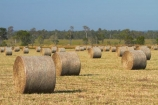 agricultural;agriculture;Australasian;Australia;Australian;country;countryside;crop;crops;Darwin;farm;farming;farmland;farms;field;fields;hay-bale;hay-bales;hay_bale;hay_bales;horticulture;meadow;meadows;N.T.;Northern-Territory;NT;paddock;paddocks;pasture;pastures;rural;Top-End