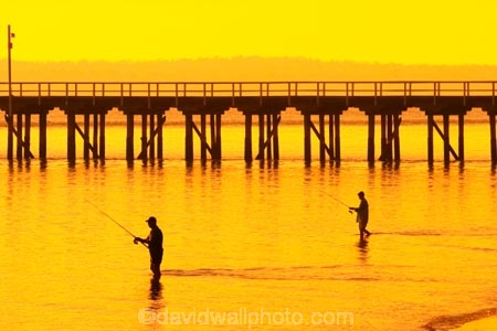 australasia;Australia;australian;coast;coastal;coastline;color;colors;colour;colours;dawn;fisher;fisherman;fishermen;fishers;fisherwoman;fisherwomen;fishing;Fraser-Coast;Hervey-Bay;jetties;jetty;orange;pier;piers;queensland;silhouette;silhouettes;sunrise;Urangan-pier;wharf;wharfs;wharves