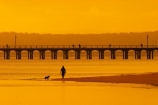australasia;Australia;australian;coast;coastal;coastline;color;colors;colour;colours;dawn;dog;dogs;Fraser-Coast;Hervey-Bay;jetties;jetty;man;orange;people;person;persons;pier;piers;queensland;silhouette;silhouettes;sunrise;Urangan-pier;wharf;wharfs;wharves