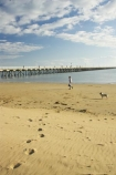 australasia;Australia;australian;beach;beaches;cloud;clouds;coast;coastal;coastline;early-light;foot-print;foot-prints;foot-steps;foot_print;foot_prints;foot_steps;footprint;footprints;footsteps;Fraser-Coast;Hervey-Bay;jetties;jetty;people;person;pier;piers;queensland;sand;sandy;shore;shoreline;sky;Urangan-pier;wharf;wharfs;wharves