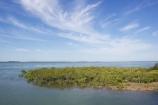 australasia;Australia;australian;coast;coastal;coastline;Fraser-Coast;Hervey-Bay;mangrove;mangroves;queensland;river-heads;shore;shoreline