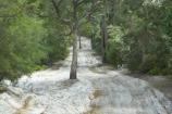 australasia;Australia;australian;bush;forest;forests;Fraser-Island;great-sandy-n.p.;great-sandy-national-park;great-sandy-np;islands;native-bush;queensland;rainforest;road;roads;sand;sandy;track;tracks;tree;trees;UN-world-heritage-site;united-nations-world-heritage-s;vegetation;world-heritage;World-Heritage-site