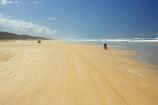 4wd;4wds;4wds;4x4;4x4s;4x4s;australasia;Australia;australian;beach;beaches;bike;biker;bikers;bikes;coast;coastal;coastline;coastlines;four-by-four;four-by-fours;four-wheel-drive;four-wheel-drives;Fraser-Island;golden-sand;great-sandy-n.p.;great-sandy-national-park;great-sandy-np;islands;motorbike;motorbiker;motorbikers;motorbikes;motorcycle;motorcycles;motorcyclist;motorcyclists;queensland;sand;sandy;seventy-five-mile-beach;shore;shoreline;shorelines;UN-world-heritage-site;united-nations-world-heritage-s;world-heritage;World-Heritage-site;yellow-sand