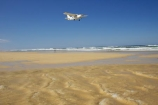 aeroplane;aeroplanes;airplane;airplanes;australasia;Australia;australian;beach;beaches;coast;coastal;coastline;coastlines;creek;creeks;eli-creek;fly;flying;Fraser-Island;golden-sand;great-sandy-n.p.;great-sandy-national-park;great-sandy-np;islands;passenger-plane;plane;planes;queensland;sand;sandy;seventy-five-mile-beach;shore;shoreline;shorelines;UN-world-heritage-site;united-nations-world-heritage-s;world-heritage;World-Heritage-site;yellow-sand