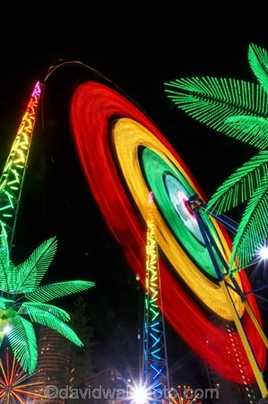 amusement-park;amusement-parks;australasia;Australia;bungies;bungy;bungy-rocket;circle;circular;color;colors;colour;colours;dark;entertainment;fun;fun-park;fun-parks;Gold-Coast;holiday;holidays;light;lights;neon;neons;night;night-life;night-time;night_life;night_time;nightlife;palm;park;parks;Queensland;ride;rides;Surfers-Paradise;theme-park;theme-parks;tourism;travel;vacation;vacations;vomitron