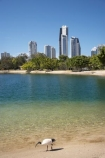Gold Coast - QLD