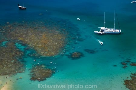 aerial;aerial-photo;aerial-photograph;aerial-photographs;aerial-photography;aerial-photos;aerial-view;aerial-views;aerials;australasian;Australia;australian;Barrier-Reef;boat;boats;coral-reef;coral-reefs;Coral-Sea;cruise;cruises;dive-site;dive-sites;diver;divers;Ecosystem;Environment;Great-Barrier-Reef;Great-Barrier-Reef-Marine-Park;holiday;holidaying;Holidays;launch;launches;Low-Is;Low-Is.;Low-Island;Low-Islands;Low-Isles;marine-environment;North-Queensland;ocean;oceans;people;person;Persons;Qld;queensland;reef;reefs;sea;seas;snorkel;snorkeler;snorkelers;snorkeling;south-pacific;swim;swimmer;swimmers;swimming;tasman-sea;tour-boat;tour-boats;tourism;tourist;tourist-boat;tourist-boats;travel;traveling;travelling;Tropcial-North-Queensland;tropical;tropical-reef;tropical-reefs;UNESCO-World-Heritage-Site;Vacation;vacationing;Vacations;water;Wave-Dancer;Wavedancer;world-heritage-area;World-Heritage-Park;world-heritage-site
