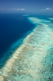 aerial;aerial-photo;aerial-photograph;aerial-photographs;aerial-photography;aerial-photos;aerial-view;aerial-views;aerials;australasian;Australia;australian;Barrier-Reef;blue;coral-reef;coral-reefs;Coral-Sea;dive-site;dive-sites;Ecosystem;Environment;Great-Barrier-Reef;Great-Barrier-Reef-Marine-Park;marine-environment;North-Queensland;ocean;oceans;Qld;queensland;reef;reefs;sea;seas;south-pacific;tasman-sea;Tongue-Reef;Tropcial-North-Queensland;tropical;tropical-reef;tropical-reefs;turquoise;UNESCO-World-Heritage-Site;world-heritage-area;World-Heritage-Park;world-heritage-site