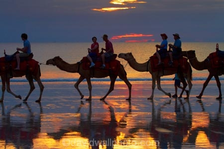 Australasian;Australia;Australian;beach;beaches;Broome;Cable-Beach;calm;camel;camel-train;camel-trains;camels;cloud;clouds;coast;coastal;coastline;dusk;evening;icon;iconic;icons;Kimberley;Kimberley-Region;nightfall;orange;placid;quiet;reflection;reflections;sand;sandy;serene;shore;shoreline;silhouette;silhouettes;sky;smooth;still;sunset;sunsets;The-Kimberley;tourism;tourist;tourist-attraction;tourist-attractions;tourists;tranquil;twilight;W.A.;WA;water;West-Australia;Western-Australia