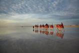 Australasian;Australia;Australian;beach;beaches;Broome;calm;camel;camel-train;camel-trains;camels;cloud;clouds;coast;coastal;coastline;icon;iconic;icons;Kimberley;Kimberley-Region;last-light;late-light;placid;quiet;reflection;reflections;sand;sandy;serene;shore;shoreline;smooth;still;The-Kimberley;tourism;tourist;tourist-attraction;tourist-attractions;tourists;tranquil;W.A.;WA;water;West-Australia;Western-Australia