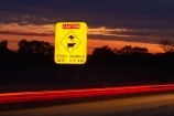 Australasian;Australia;Australian;car;car-lights;cars;cow;cows;dark;evening;Gibb-River-Highway;Gibb-River-Rd;Gibb-River-Rd-sign;Gibb-River-Road;Gibb-River-Road-sign;information-sign;information-signs;kangaroo;kangaroos;Kimberley;Kimberley-Region;light;light-trails;lights;long-exposure;next-670km;night;night-time;night_time;road-sign;road-signs;sign;signs;tail-light;tail-lights;tail_light;tail_lights;The-Kimberley;time-exposure;time-exposures;time_exposure;traffic;W.A.;WA;warning-sign;warning-signs;West-Australia;Western-Australia