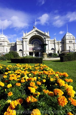 1879;architectural;architecture;australasian;Australia;australian;building;buildings;carlton-gardens;exhibition-building;flower;flower-bed;flower-beds;flower-garden;flower-gardens;flowers;historic;historical;history;marigold;marigolds;Melbourne;old;orange;royal-exhibition-building;Victoria;yellow
