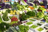 australasian;Australia;australian;basil;cabbage;cabbages;carrot;carrots;citrus;colorful;colourful;commerce;commercial;fennel;food;food-market;food-markets;food-stall;food-stalls;fruit;fruit-and-vegetables;fruit-market;fruit-markets;fruits;herb;herbs;leek;leeks;market;market-place;market_place;marketplace;markets;Melbourne;parsley;produce;produce-market;produce-markets;product;products;Queen-Victoria-Market;raddishes;retail;retailer;retailers;rosemary;shop;shopping;shops;stall;stalls;steet-scene;stone-fruit;street-scenes;vegetable;vegetables;Victoria