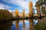 australasia;Australasian;Australia;australian;autuminal;autumn;autumn-colour;autumn-colours;autumnal;brook;brooks;calm;color;colors;colour;colours;creek;creeks;deciduous;fall;flow;Jindabyne;Kosciuszko-N.P.;Kosciuszko-National-Park;Kosciuszko-NP;leaf;leaves;N.S.W.;New-South-Wales;NSW;placid;poplar;poplar-tree;poplar-trees;poplars;quiet;reflection;reflections;river;rivers;season;seasonal;seasons;serene;smooth;Snowy-Mountains;Snowy-Mountains-Drive;South-New-South-Wales;Southern-New-South-Wales;still;stream;streams;Thredbo-River;tranquil;tree;trees;water;wet