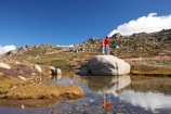 alpine;Australia;boulder;boulders;boy;boys;calm;child;children;families;family;hike;hiker;hikers;hiking;kid;kids;Kosciuszko-N.P.;Kosciuszko-National-Park;Kosciuszko-NP;Kosciuszko-Walk;little-boy;mother;mothers;mountain-stream;mountain-streams;mountains;N.S.W.;New-South-Wales;North-Rams-Head;NSW;people;person;placid;pond;ponds;pool;pools;quiet;Rams-Head-Range;reflection;reflections;rock;rocks;rocky;serene;small-boys;Small-Mountain-Tarn;smooth;Snowy-Mountains;Snowy-Mountains-Drive;South-New-South-Wales;Southern-New-South-Wales;still;tramp;tramper;trampers;tramping;tranquil;trek;treker;trekers;treking;trekker;trekkers;trekking;walk;walker;walkers;walking;water