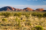 Anugu;arid;Australasia;Australia;Australian;Australian-Desert;Australian-Deserts;back-country;backcountry;Desert;Deserts;Kata-Tjuta;N.T.;National-Park;National-Parks;Northern-Territory;NT;Outback;red-centre;The-Outback;Uluru-_-Kata-Tjuta-National-Park;Uluru-_-Kata-Tjuta-World-Heritage-Area;UNESCO;Unesco-world-heritage-area;World-Heritage-Area;World-Heritage-Areas