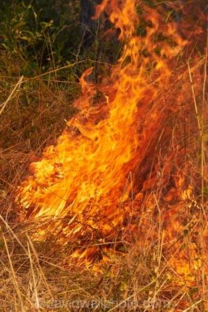 alight;Australasia;Australia;burn;burned;burning;burnoff;burnoffs;burns;burnt;bush-fire;bush-fires;danger;dangerous;destruction;fire;fires;flamable;flame;flames;flaming;grass-fire;grass-fires;Gregory-N.P;Gregory-National-Park;Gregory-NP;heat;hot;Jutpurra-N.P;Jutpurra-National-Park;Jutpurra-NP;N.T.;national-parks;Northern-Territory;NT;on-fire;orange;Top-End;Victoria-Highway;Victoria-River;wild-fire;wild-fires;wildfire;wildfires