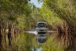 Australia;Australian;billabong;billabongs;bus;buses;calm;coach;coaches;flood-plain;flood-plains;flooded-road;flooded-roads;flooding;floodplain;floodplains;Gagadju;Gagudju-Dreaming;Kakadu;Kakadu-billabong;Kakadu-billabongs;Kakadu-flood-plain;Kakadu-flood-plains;Kakadu-floodplain;Kakadu-floodplains;Kakadu-N.P.;Kakadu-National-Park;Kakadu-NP;Kakadu-wetland;Kakadu-wetlands;N.T.;Northern-Territory;NT;placid;quiet;reflection;reflections;road-conditions;serene;smooth;still;Top-End;tour-bus;tour-buses;touring;tourism;tourist;tourist-bus;tourist-buses;tourist-coach;tourist-coaches;tourists;tranquil;UN-world-heritage-area;UN-world-heritage-site;UNESCO-World-Heritage-area;UNESCO-World-Heritage-Site;united-nations-world-heritage-area;united-nations-world-heritage-site;water;wet-season;wetland;wetlands;world-heritage;world-heritage-area;world-heritage-areas;World-Heritage-Park;World-Heritage-site;World-Heritage-Sites;Yellow-Water;Yellow-Water-Billabong;Yellow-Water-Cruises-bus;Yellow-Water-Wetland;Yellow-Water-Wetlands